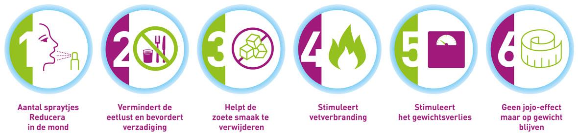 Reducera.nl | De kracht van reducera samengevat